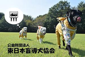 東日本盲導犬協会~クラウドファンディングへの挑戦~募金~