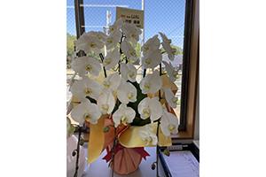 たくさんの綺麗なお花ありがとうございます!!